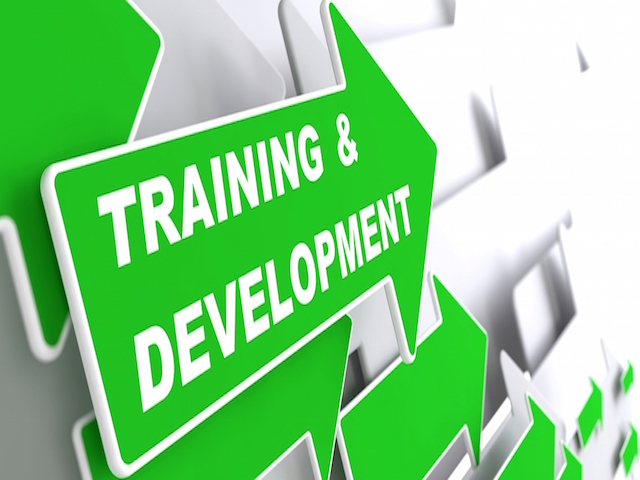 Industry-oriented training